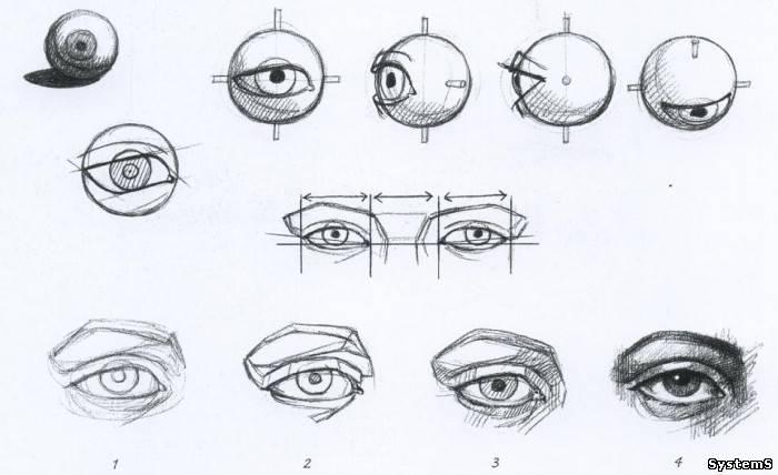 ніс в картинках